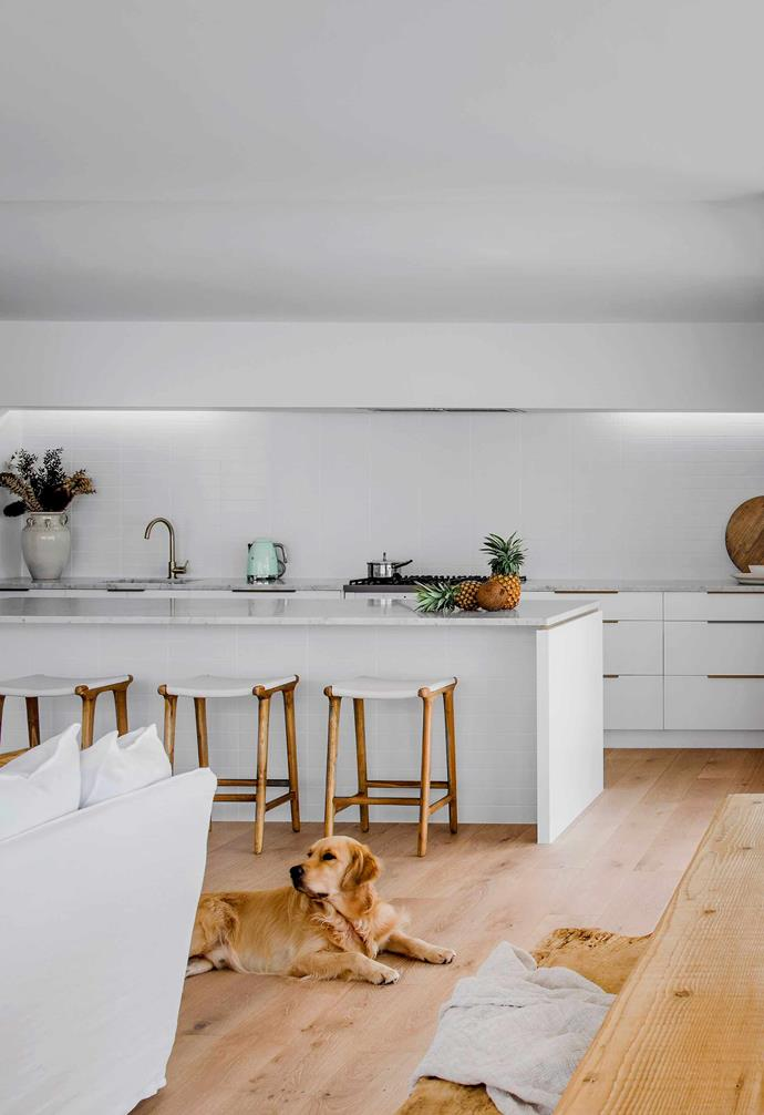 "**Kitchen** Alfie right at home on the similarly coloured European oak floorboards in Limed Alpine by [Trojan Timbers. The sleek kitchen features a Carrara marble island bench by [Finestone](https://www.finestone.com.au/|target=""_blank""