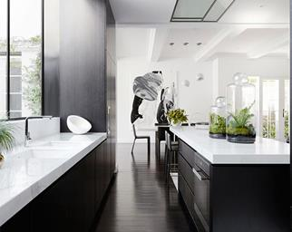 monochrome luxury kitchen
