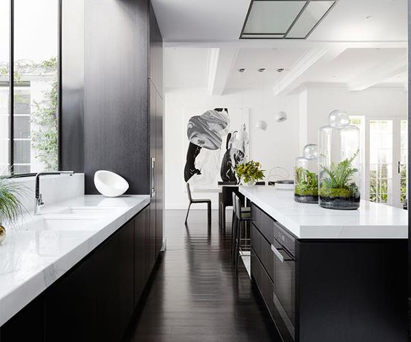 monochrome luxury kitchen