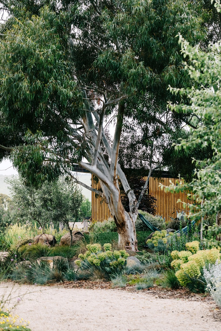 """[Garden designer Kathleen Murphy](https://www.homestolove.com.au/landscape-designer-kathleen-murphy-garden-gisborne-21086