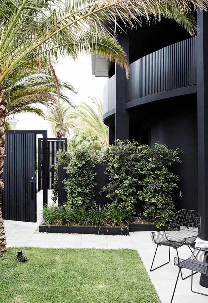 Creating an inviting garden is key to creating a welcoming environment in the home. We love the focus on these statement palm trees at The Bower as well as the family-friendly lawn.