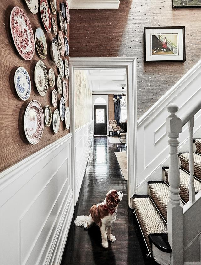"This narrow [1880s Sydney terrace](https://www.homestolove.com.au/1880s-sydney-terrace-home-with-charming-interiors-20319|target=""_blank"") punches above its weight thanks to smart spatial planning and a dynamic decorating approach. The floors, formerly a mix of various honey tones, were sanded and treated with Feast Watson Black Japan."