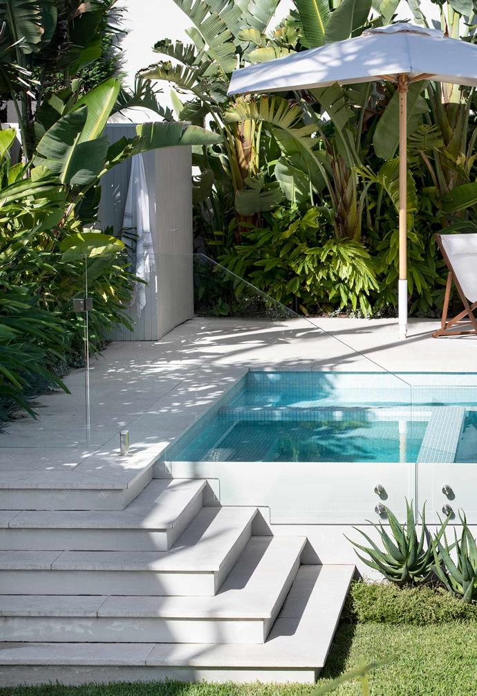 "On the fringe of the terrace are giant strelitzia and shell ginger underplanted with sedums and aloes. Duro limestone pool pavers from [Eco Outdoor](https://www.ecooutdoor.com.au/|target=""_blank""