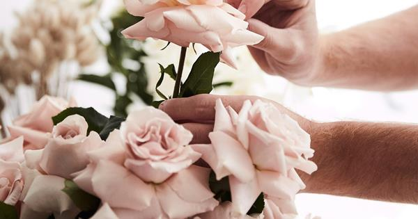 How to press a rose with a book or flower press