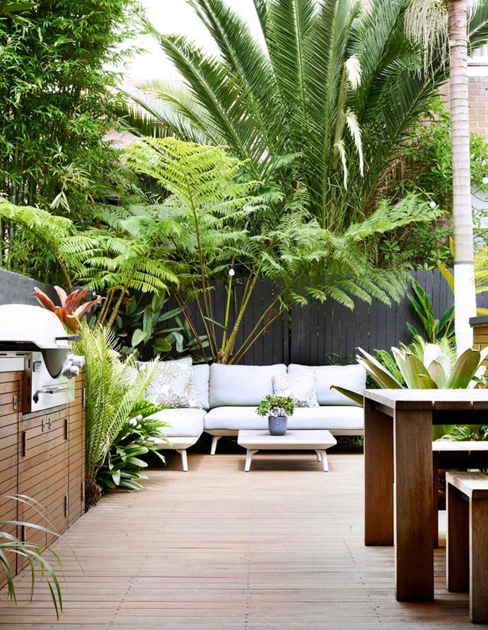 **Lawn is not a necessity** – even if you have kids. Decking, paving, gravel and sand are all viable alternatives that will save you from mowing. Tropical beauties in varying heights and foliage colours create points of interest around this Quercus Gardens designed courtyard in Bondi.