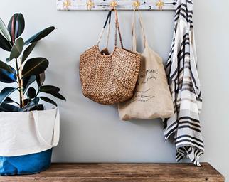 Low-maintenance indoor plants
