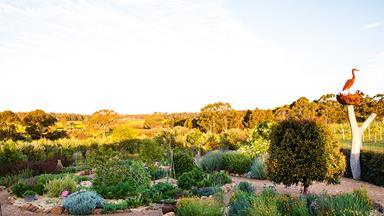 A sensory garden in WA's Geographe wine region