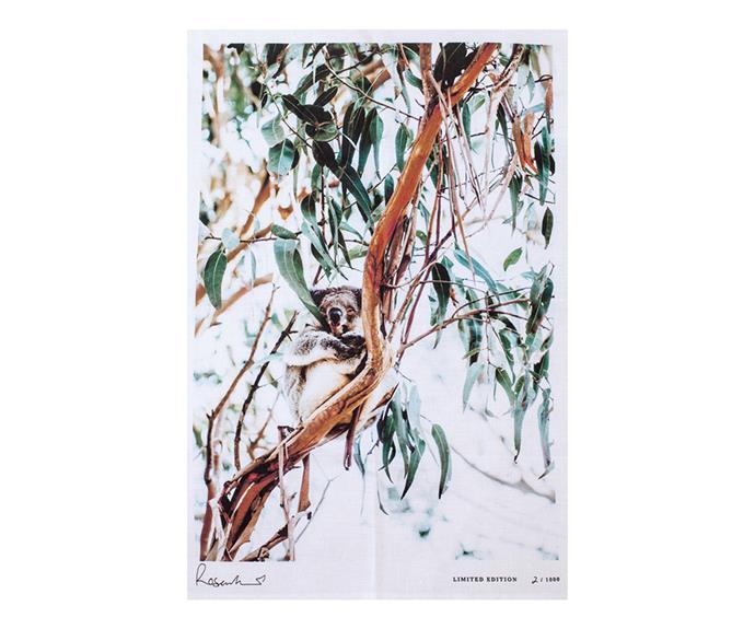 "Koala Souvenir tea towel, $68, [Kara Rosenlund](https://shop.kararosenlund.com/koala-souvenir-tea-towel/ target=""_blank"" rel=""nofollow"")"