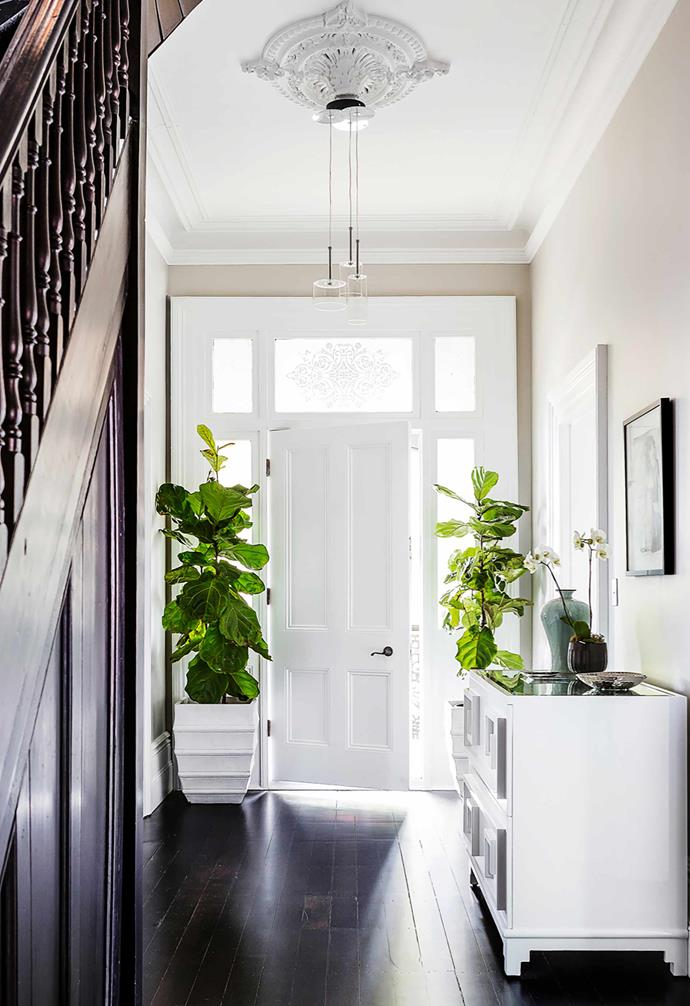 """Pairing Black Japan floors with soft neutrals and stark whites will emphasise the contrast in colours for a distinctive look, like in this [updated Victorian terrace](https://www.homestolove.com.au/grand-victorian-terrace-updated-with-contemporary-furnishings-21112
