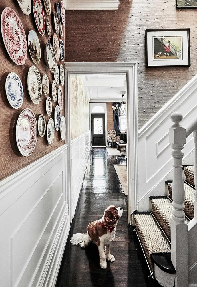 """Black Japan flooring is perfect for homes that receive ample sunlight like in this [1880s terrace](https://www.homestolove.com.au/1880s-sydney-terrace-home-with-charming-interiors-20319