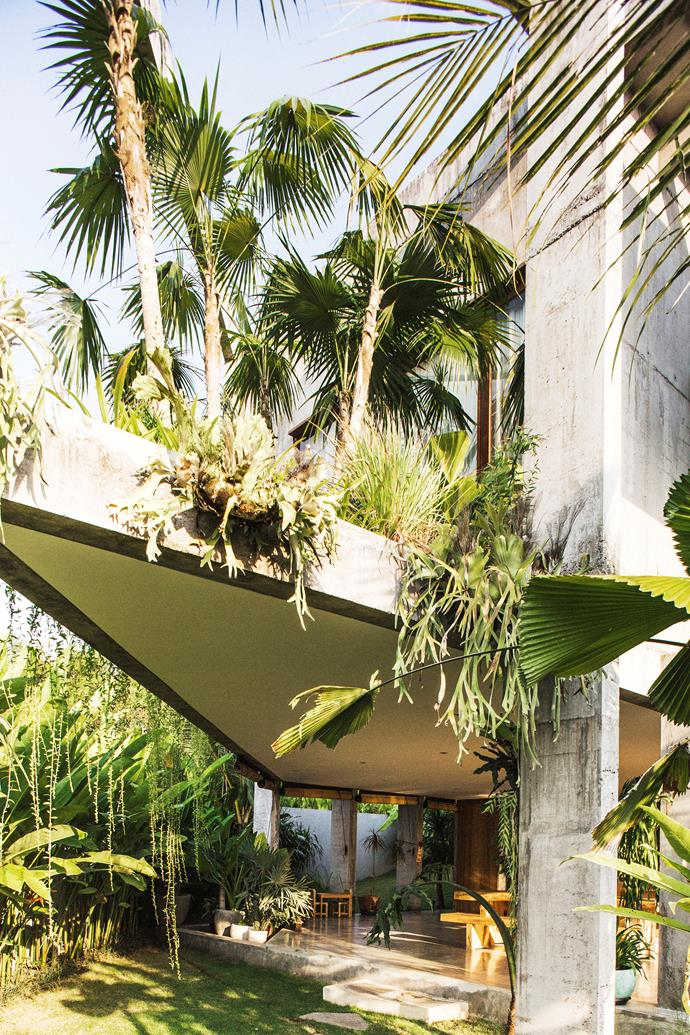 The gardens are wild with indigenous plants and palms. An overhanging concrete slab protects the open-plan kitchen and dining area from direct sun and encourages good air flow throughout the day.