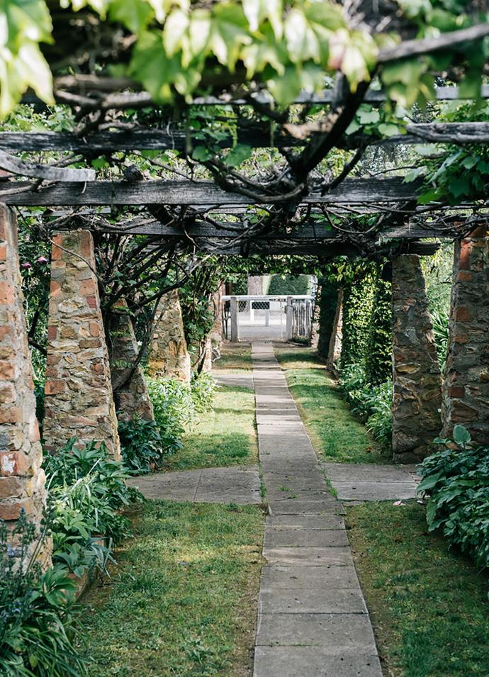 Ornamental grape grows over the stone and timber arbour.