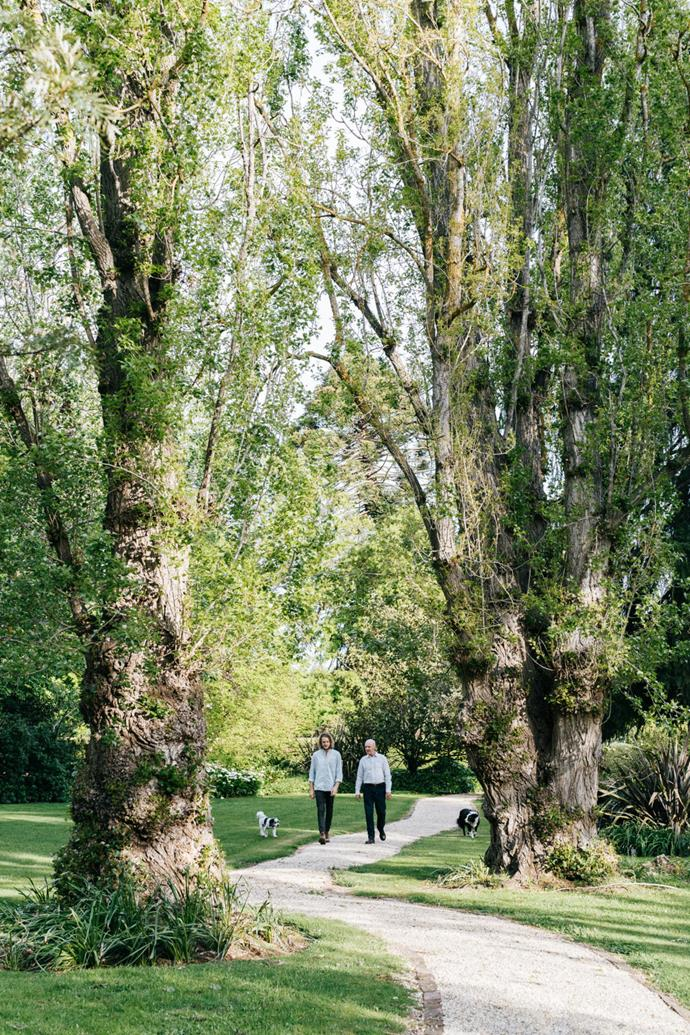 Matt and Alister stroll through the Tahbilk property, dwarfed by old Lombardy poplars believed to have been planted by Mary Purbrick.