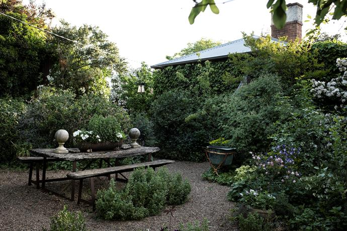 The breakfast courtyard is surrounded by David Austen, Sparrieshoop and Sally Holmes shrub roses.