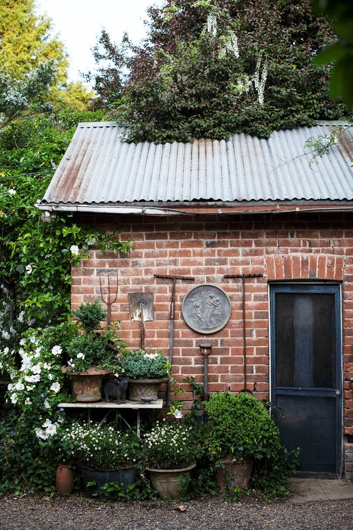 Joseph disguised the old generator shed with an Alba rose and a white wisteria, and converted it into his bedroom.