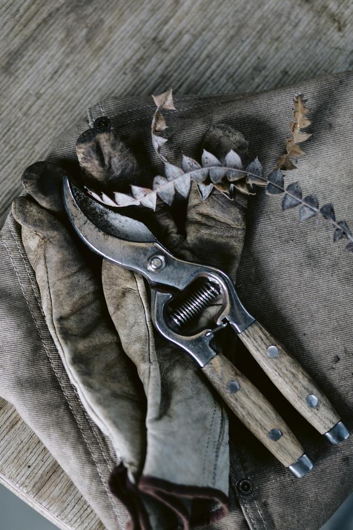 Photo: Marnie Hawson / bauersyndication.com.au