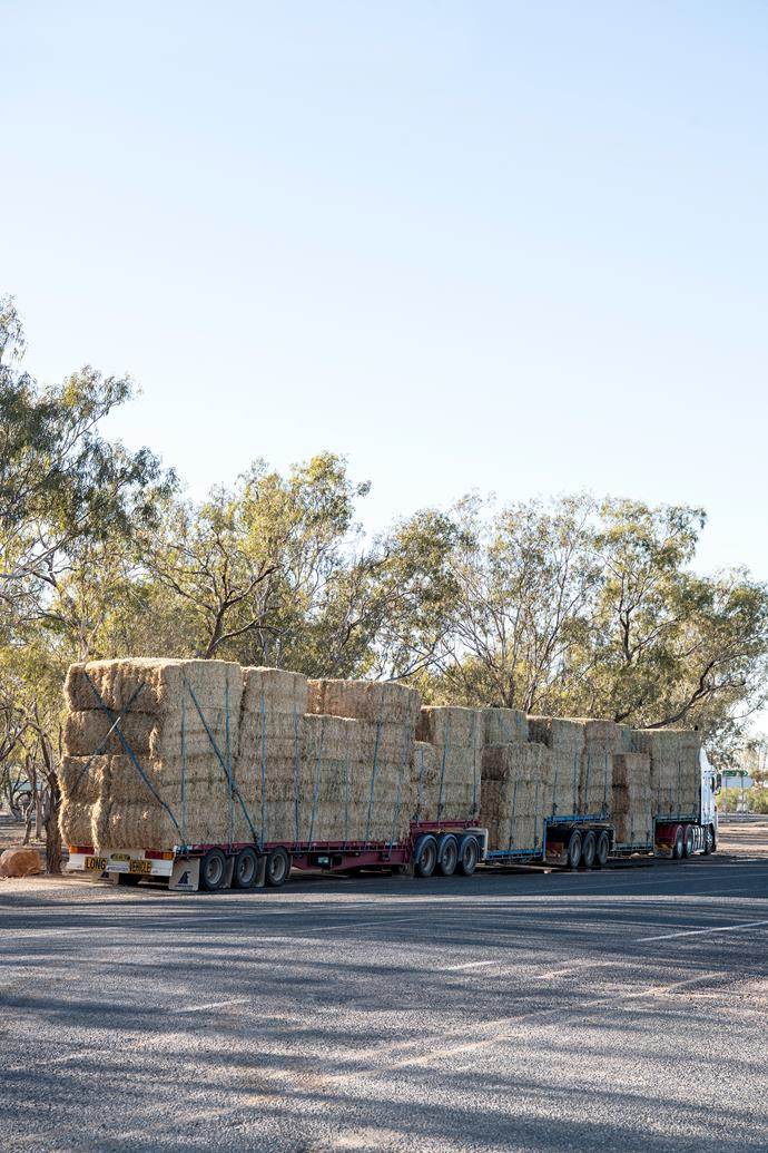 The hay on the side of the road near town is testament to the relentless drought.