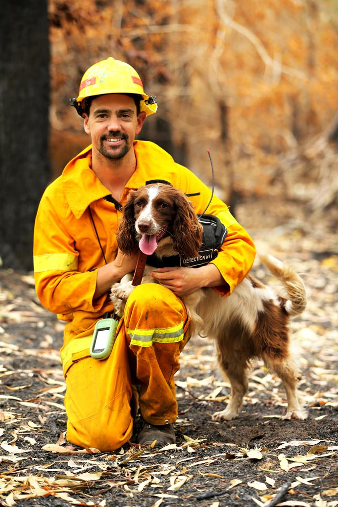 Ryan and his dog work on the edge of bushfire zones where surviving koalas have retreated to.