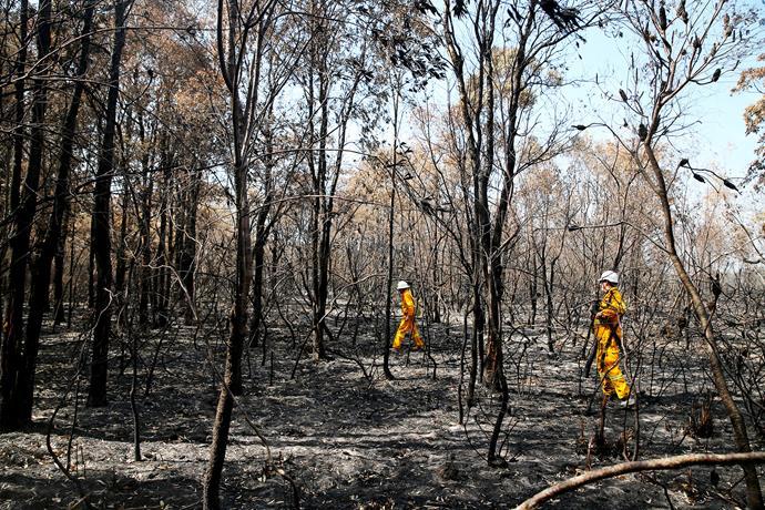The charred earth near Lake Innes.