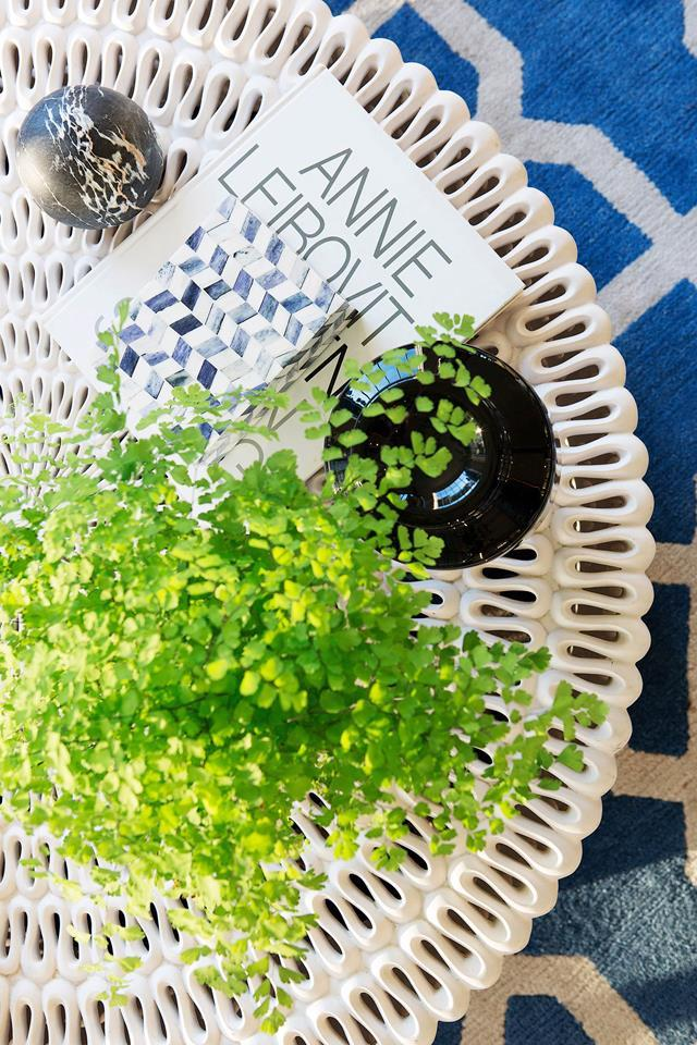 Ferns are popular indoor plants and can add a touch of life to any space, providing there is adequate natural sunlight.