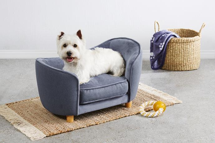 Small pet sofa, $59.99