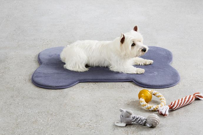 Memory foam pet mat, $19.99 with rope dog toys, $3.99 each