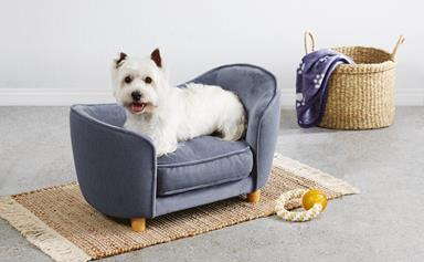 Aldi is selling a miniature furniture range for pets