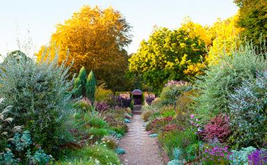 9 autumn gardening jobs to tick off the list now