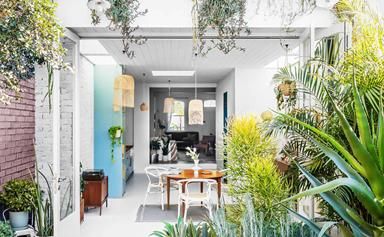 A colourful terrace extension in Newtown that's full of character