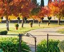 What to do in the garden in Autumn