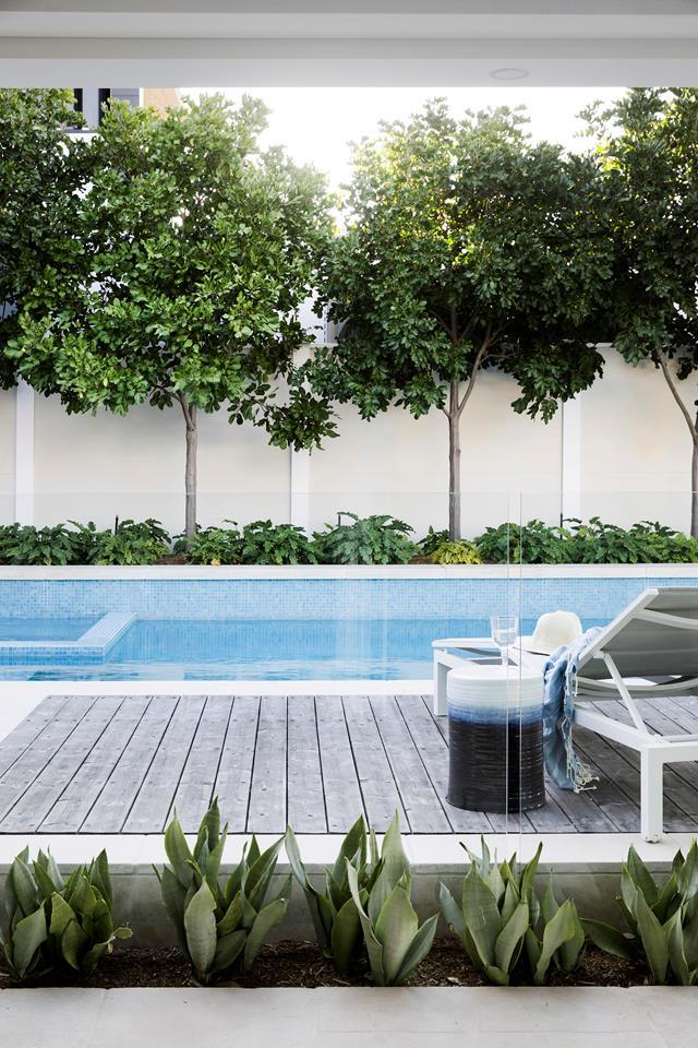The brief was for a modern pool and alfresco entertaining space that would connect the house, outdoor areas and bay.