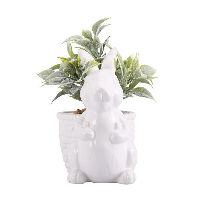"Bunny Planter, $3.50, [Kmart](https://www.kmart.com.au/product/bunny-planter/2924340|target=""_blank""|rel=""nofollow"")"