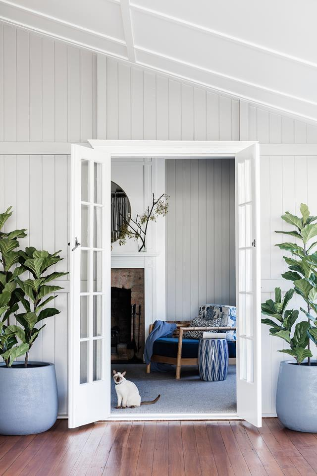 "Jewel tones and layers of texture take this [classic Queenslander](https://www.homestolove.com.au/queenslander-renovation-and-extension-5965|target=""_blank"") to new heights. The family's Tonkinese cat, Cleo, pauses to enjoy the breeze through the french doors."
