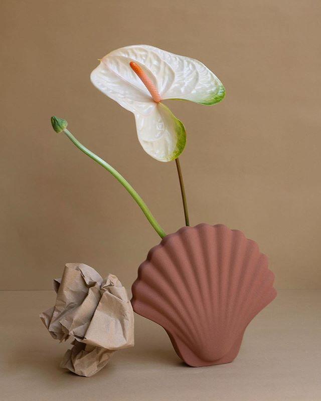"Los Objetos Decorativos Vase - Seashell Vase Terracotta, $150, [Tigmi Trading](https://tigmitrading.com/collections/objects-all/products/los-objectos-decorativos-seashell-vase-terracotta target=""_blank"" rel=""nofollow"")"