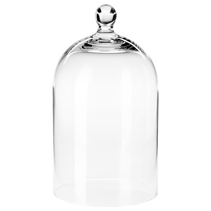 "ORGONTIDIG Glass dome, $12.99, [Ikea](https://www.ikea.com/au/en/p/morgontidig-glass-dome-clear-glass-50436288/ target=""_blank"" rel=""nofollow"")"