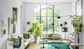 10 indoor plants that are perfect for apartments