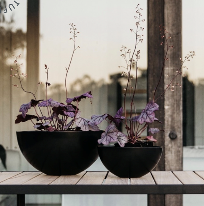 """**UNEARTHED Planter Dish Black, $149.00, [Design Stuff](https://www.designstuff.com.au/unearthed-garden-planter-dish-black-3-sizes/