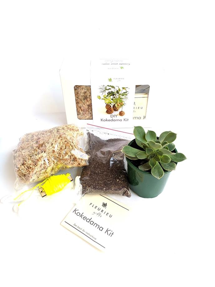"Complete Kokedama Kit, $37.95, [Fleurieu Gifts](https://www.fleurieugifts.com.au/product/complete-kokedama-kit/|target=""_blank""