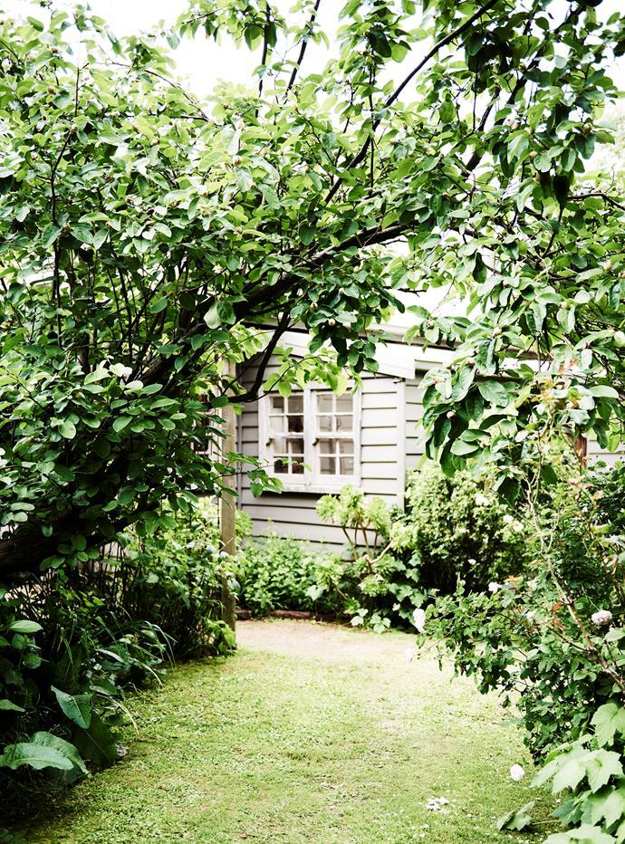 A view of the studio through the back garden.