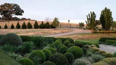 A rural garden in NSW Central West with formal elements