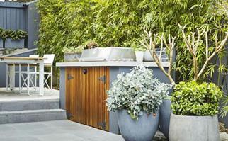 Renters' guide to growing a garden