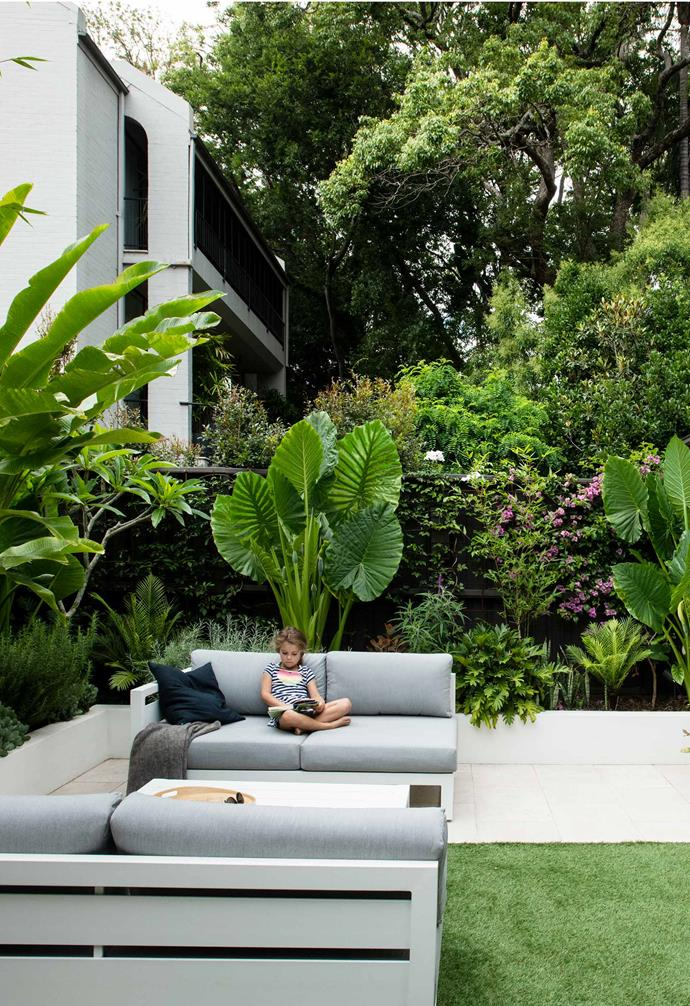 """With large-leafed plants and bamboo lining the courtyard, it feels private, despite neighbouring homes on the boundary. The paving is Lavarosa Alfresco limestone from [Sareen Stone](http://www.sareenstone.com.au/
