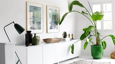 Indoor greenery: 10 homes brought to life with house plants