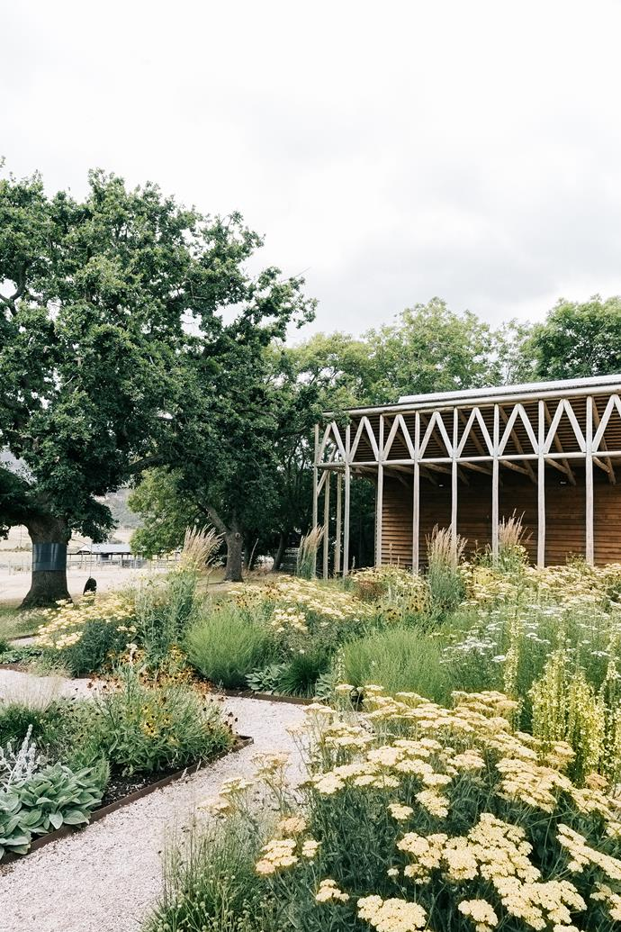 The garden outside the Exhibition Room.