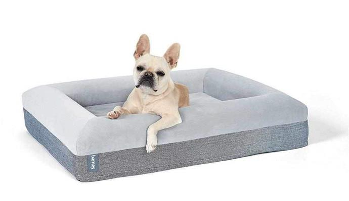 """Barney Bed dog bed, from $280, [Barney Bed](https://barneybed.com.au/collections/frontpage