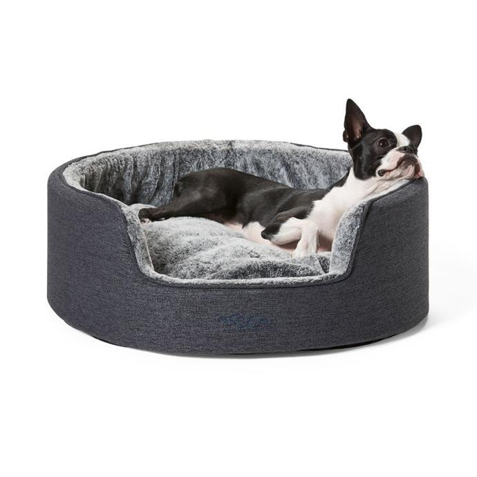 """Snooza Buddy Bed 'Chinchilla' dog bed, from $99.99, [Pet House](https://www.pethouse.com.au/snooza-buddy-bed-chinchilla