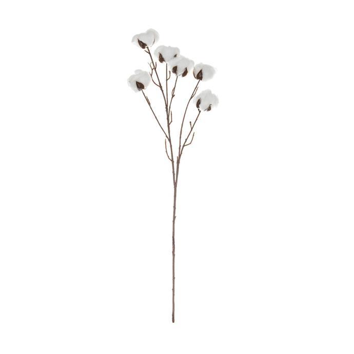 "Cotton Stem, $15, [Life Interiors](https://www.lifeinteriors.com.au/life-interiors-cotton-stem|target=""_blank""|rel=""nofollow"")"