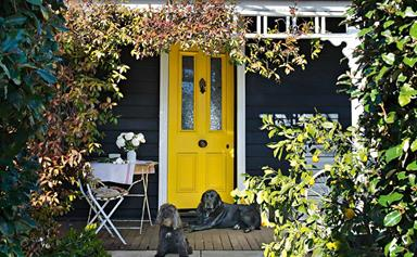 16 front doors that make a statement