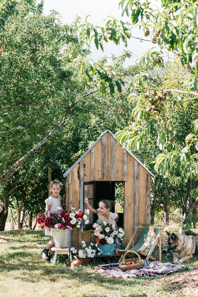 Identical seven-year-old twins Elisabeth (left) and Maggie set up a flower shop in their orchard cubby, a mini version of The Hut, constructed using native musk (Olearia argophylla) while their German shepherd Claudia supervises.