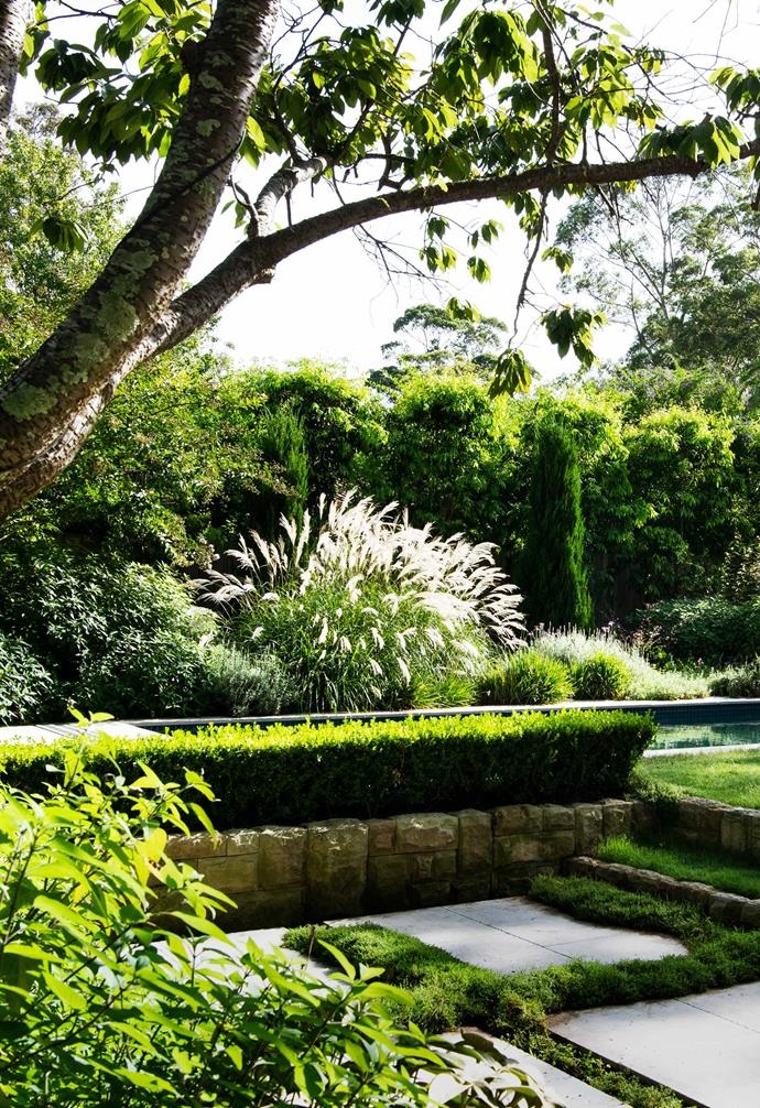 The manicured buxus hedging and limestone masonry walls foster a cosy sense of containment while the change in height adds to the garden's sense of scale. White star creeper between the pavers adds softness to the entertaining space.
